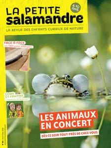 la petite salamandre 99